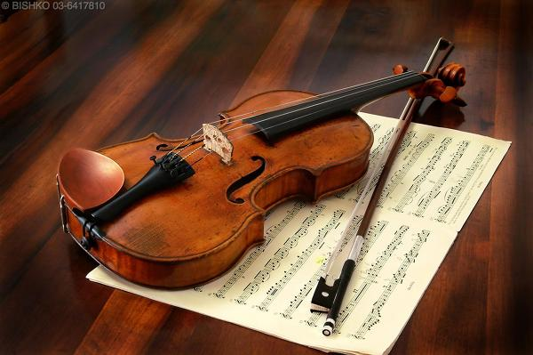 바이올린 개인레슨
