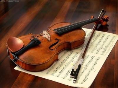 바이올린, 비올라, 플룻, 드럼 전문 개인 지도, 호주 선생님