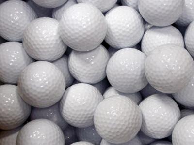 골프 연습볼 350개 100불
